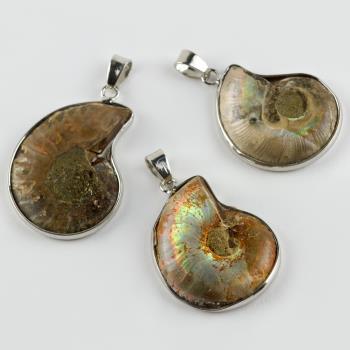 Ammonit Doğaltaş Kolye Ucu